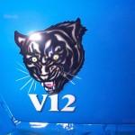 airbrush tiger v12